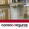 Digital magazine consorseguros 07